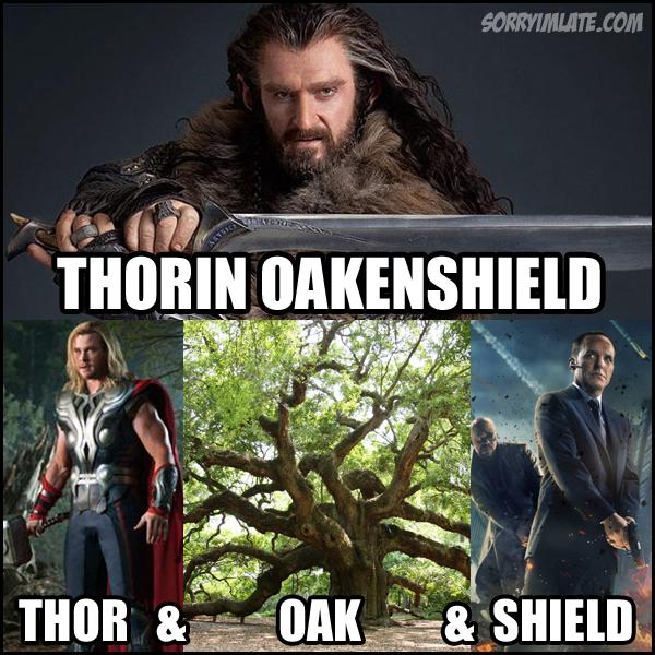 Thorin-Oakenshield-Meme